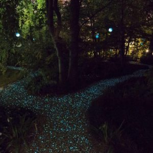 Sentiero luminoso
